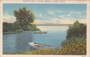 New York Greetings From Swan Lake 1962