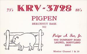 KRV-3728 Pigpen Beechnut Base Paige A See Jr Laurel Maryland