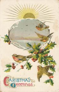 Christmas Greetings - Sunrise - Birds and Mistletoe - pm 1912 - DB