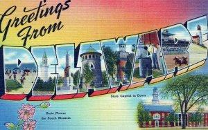DE, Delaware Linen Large Letter Postcard, Tichnor