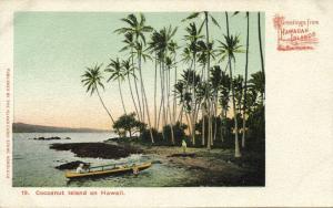 Hawaiian Islands, Cocoanut Island, Palm Trees (1900) Private Mailing Card