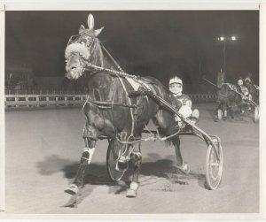 YONKERS Raceway, Harness Horse Race, VICTORBEIN winner
