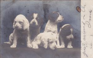 RP; 5 puppy dogs , PU-1906