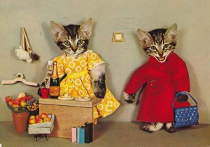 Cats Serving Food & Cocktails Real Photo Postcard
