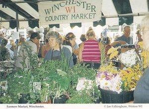 Farmers Market Winchester Hampshire Postcard