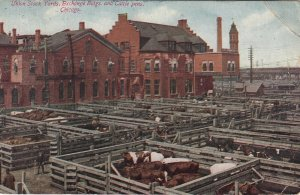CHICAGO, Illinois, 1912; Union Stock Yards, Exchange Bldgs, & Cattle pens