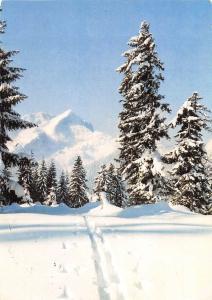 Blick zur Alpspitze Foto: Freytag Mauritius Winter Forest Mountain