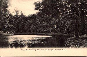 New York Randolph Where The Conewango Flows Near The Springs