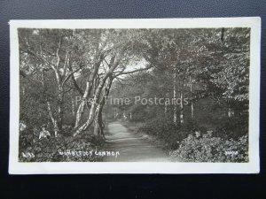 London WIMBLEDON COMMON c1922 Postcard by Jony8 4193
