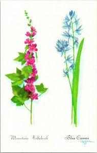 Vtg Cartolina Unp Artista Firmato Harrison Crandall Mountain Hollyhook Blu Camas
