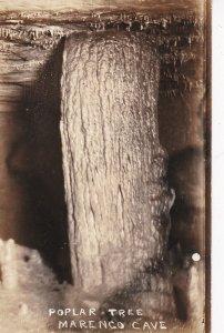 RP: INDIANA, 1900-1910's; Polar Tree, Marengo Cave