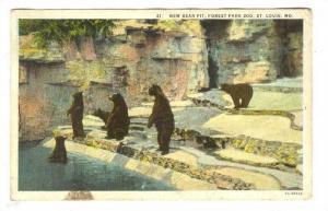 New Bear pit, St Louis, Missouri, PU-1929