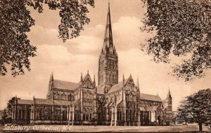 England Salisbury Cathedral North East