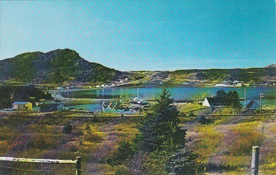 Canada Newfoundland Conception Bay Peninsula Holyrood Harbour