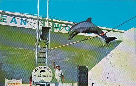 Florida Fort Lauderdale Over The High Hurdle At Ocean World
