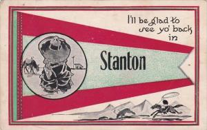 Pennant Series Stanton Illinois 1913