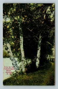 Gorham NH-New Hampshire Path By Androscoggin River Vintage Postcard