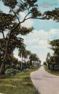 Cuba Havana Central Road Near Havana