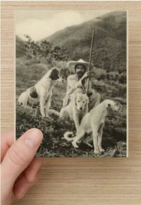 Single (1), Reproduction Vintage Postcard, Mexican Man w/Dogs Mountains in Sepia