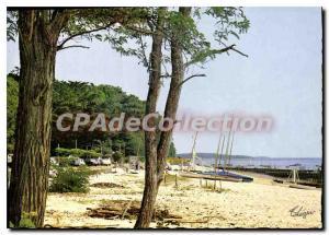 Modern Postcard Bassin D'Arcachon L'Herbe The Beach