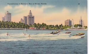 Florida Miami Aquaplaning In Biscayne Bay