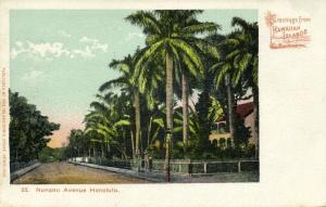 hawaii, HONOLULU, Nunanu Avenue (1899) Island Curio Store No. 23