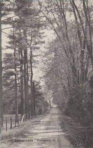 New Jersey Princeton Lovers Lane Albertype