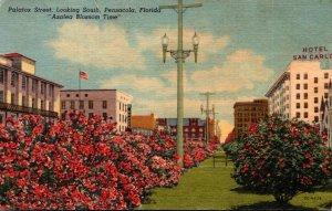 "Florida Pensacola Palafox Street Looking South Azalea Blossom Time""..."