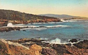 PEBBLE BEACH CA~DEL MONTE LODGE~CYPRESS POINT~ALBERTYPE PHOTO POSTCARD
