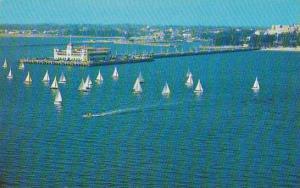 Florida Saint Petersburg Sailboat Regatta Around Million $$ Pier