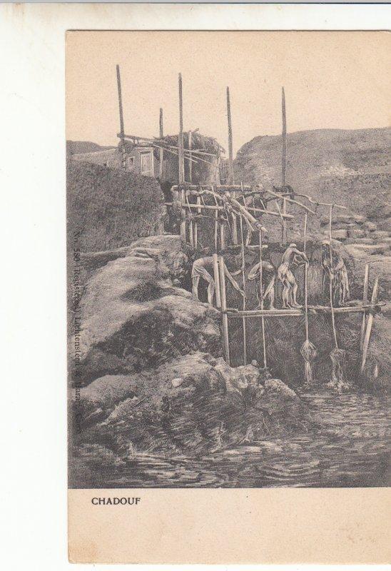 P1747 old egypt unused postcard, chadouf