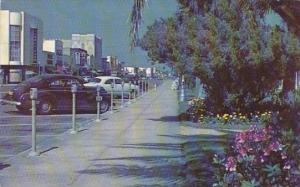 Florida Daytona Beach Street Showing River Front Park