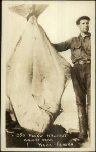 Kake Alaska AK Fishing Catch Man w/ 350lb Halibut Real Photo Postcard