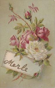 Name Card Merle