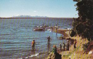 Yellowstone National Park Fishing In Yellowstone Lake