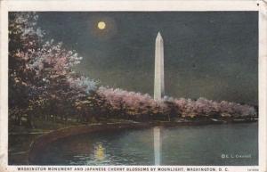Washington D C Washington Monument and Japanese Cherry Blossoms By Moonlight ...