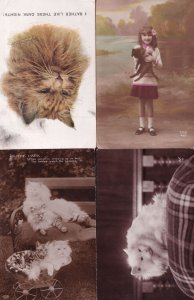 Kittens Cats 4x Antique Postcard s incl Real Photo