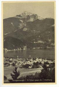 Panoramic View of City & Lake,Saint Gilgen,Salzburg,Austria 1910-20s
