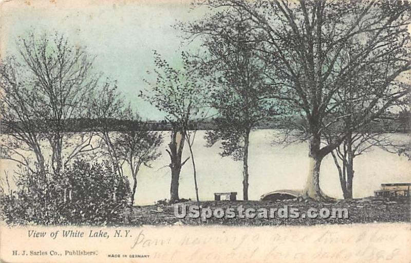 View of Lake White Lake NY 1907