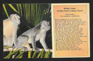 'Monkey Jungle' Monkeys in Tree Miami FL Unused c1930s