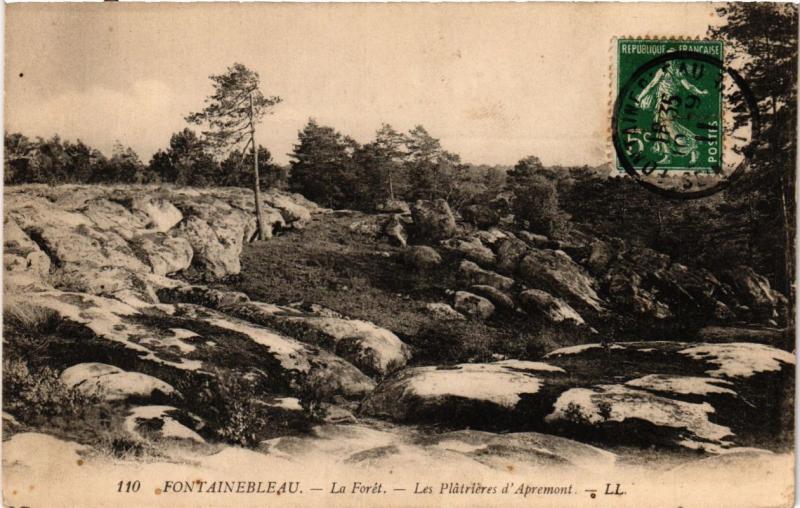 CPA FONTAINEBLEAU - La Foret - Les Platrieres d'Apremont (249022)
