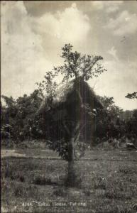Penang Malaysia Sakai House in Tree c1920 Real Photo Postcard