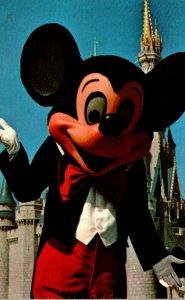 Florida Walt Disney World Mickey Mouse