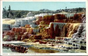 Hymen Terrace, Mammoth Hot Springs Yellowstone Wyoming Vintage Postcard J03