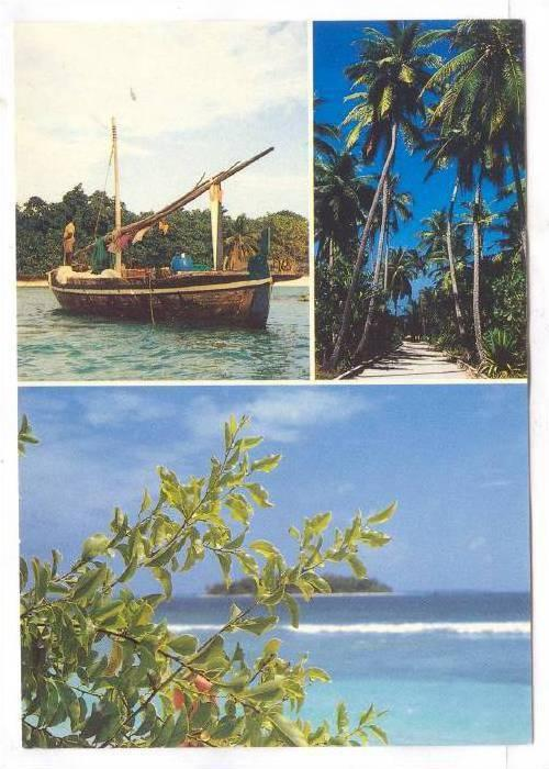 Fishing boat, Palm tree lined street, ocean view, Maledvies, 50-70s