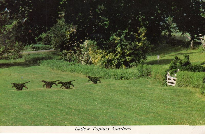 Ladew Topiary Gardens Monkton Maryland USA Postcard
