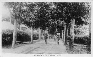 br106540 avenue of mango trees lagos nigeria