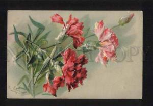 052420 Embossed CARNATIONS Flowers by C. KLEIN vintage PC