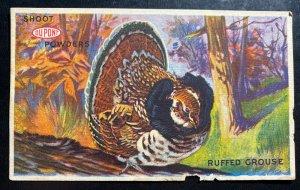 Mint USA Advertising Postcard Shoot Powders Ruffed Grouse