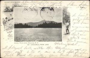 White Mountains Homes Photo Artist - Nice Border Chocorua From Lake c1900